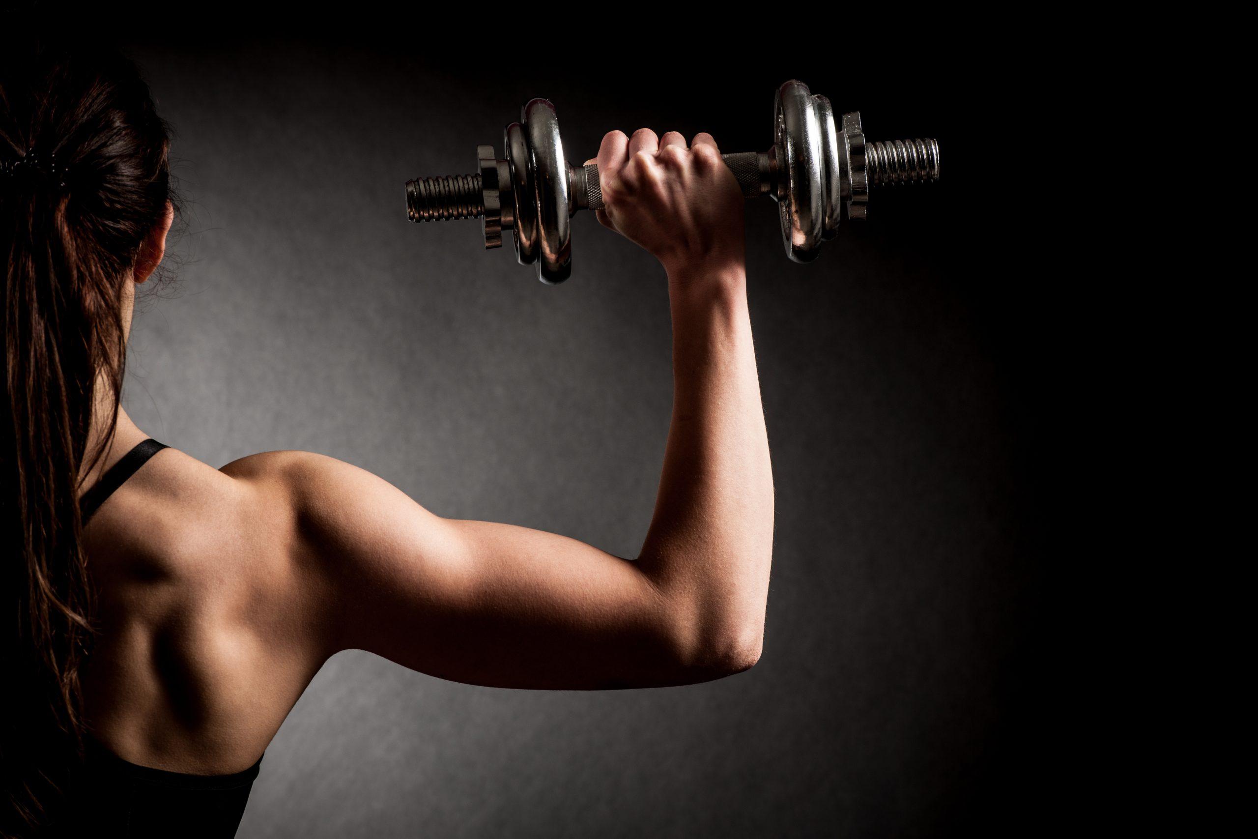 Šport Fitness