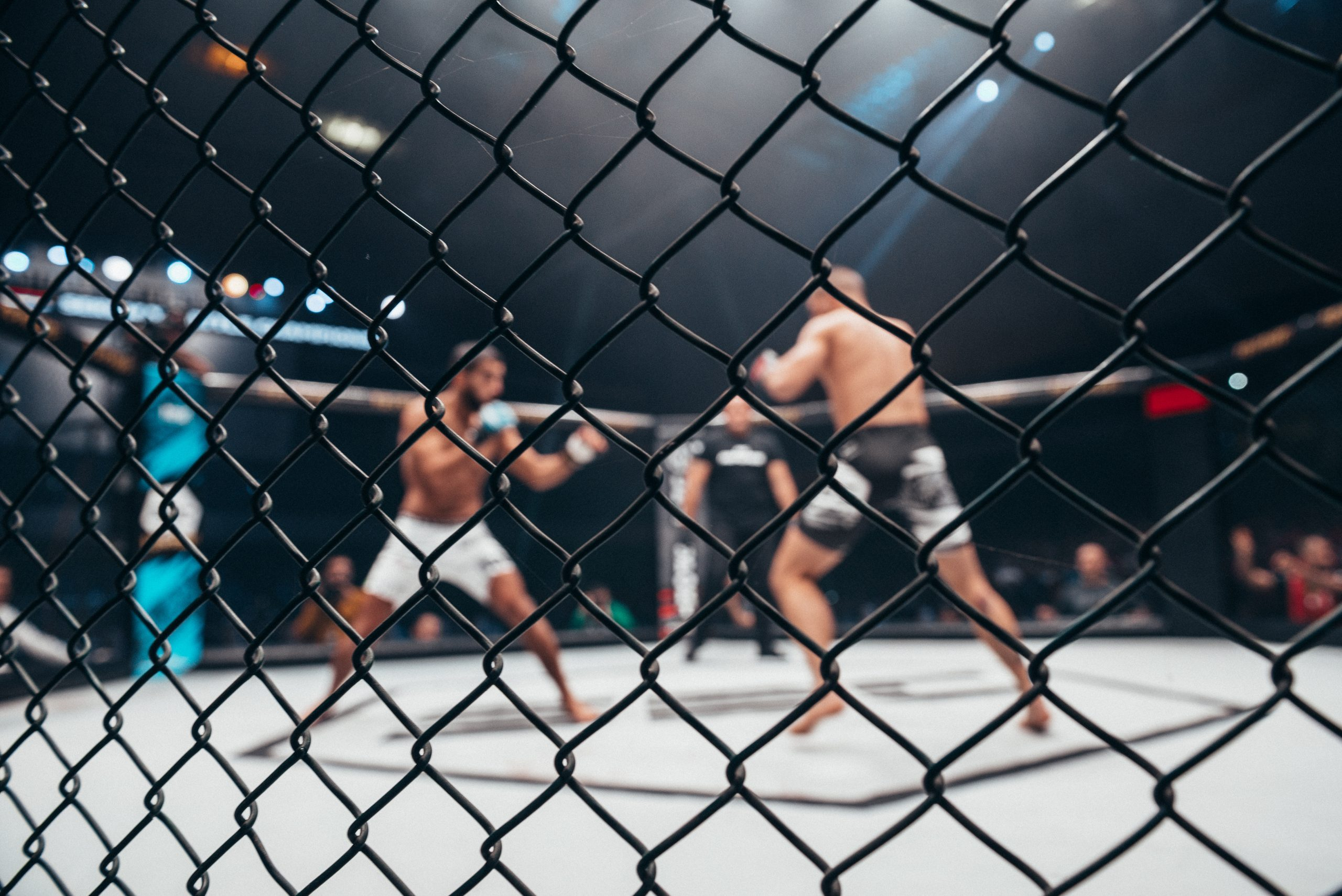 Šport MMA